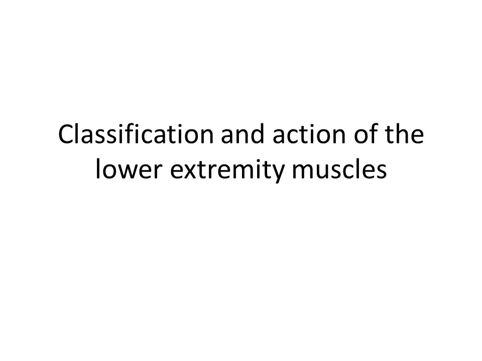 Movements of the lower extremity Hip – Flexion/Extension – Abduction/Adduction – Internal rotation/ External rotation Knee – Flexion/Extension Ankle – Plantarflexion/ Dorsiflexion – Inversion/eversion