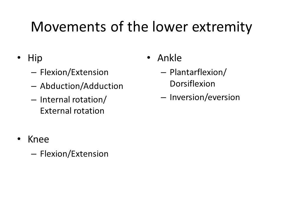 Muscles of the anterior Hip Iliopsoas – Iliacus – Psoas major Action: