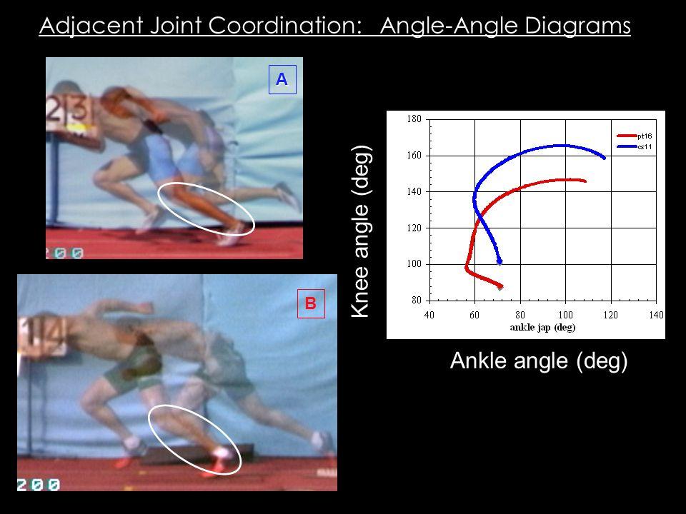 A B Adjacent Joint Coordination: Angle-Angle Diagrams Ankle angle (deg) Knee angle (deg)
