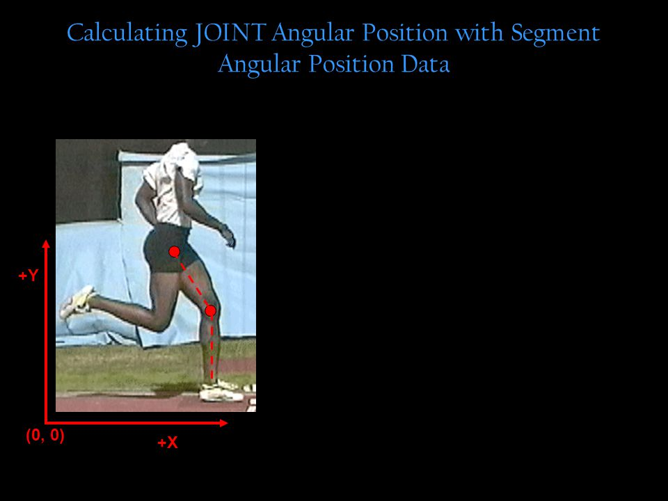 Calculating JOINT Angular Position with Segment Angular Position Data +Y (0, 0) +X