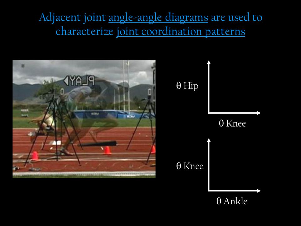 Adjacent joint angle-angle diagrams are used to characterize joint coordination patterns  Knee  Hip  Knee  Ankle