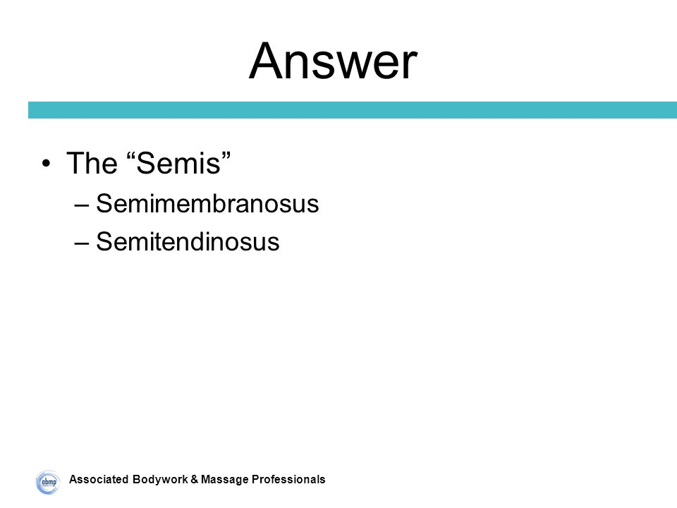 Associated Bodywork & Massage Professionals Answer The Semis –Semimembranosus –Semitendinosus