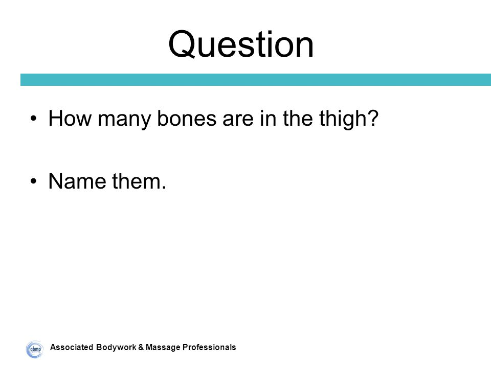 Associated Bodywork & Massage Professionals Question How many bones are in the thigh Name them.
