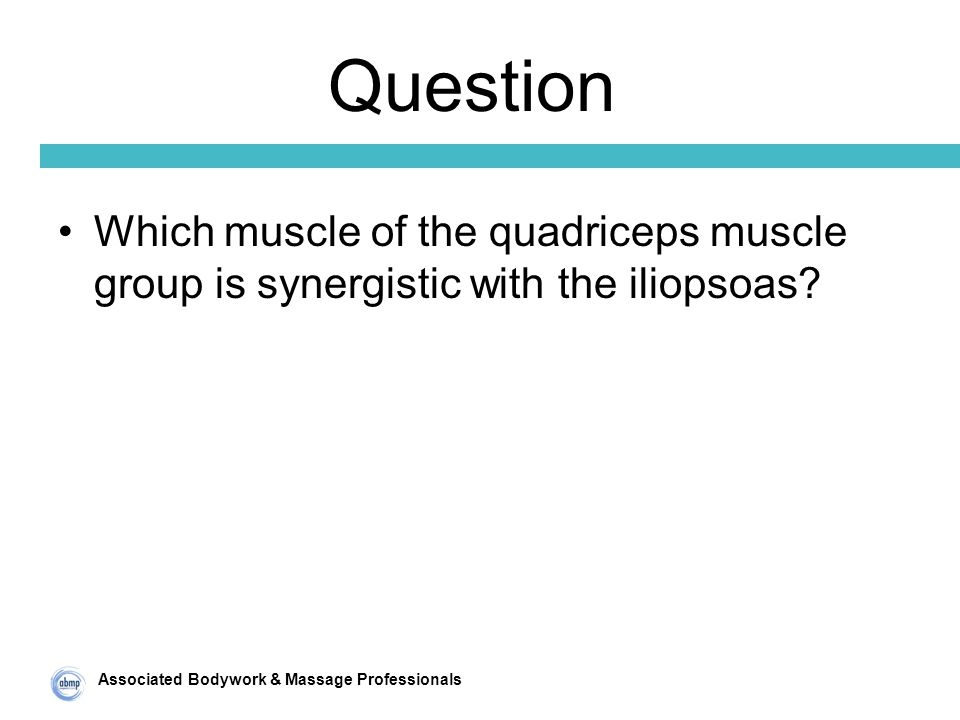 Associated Bodywork & Massage Professionals Question Which muscle of the quadriceps muscle group is synergistic with the iliopsoas