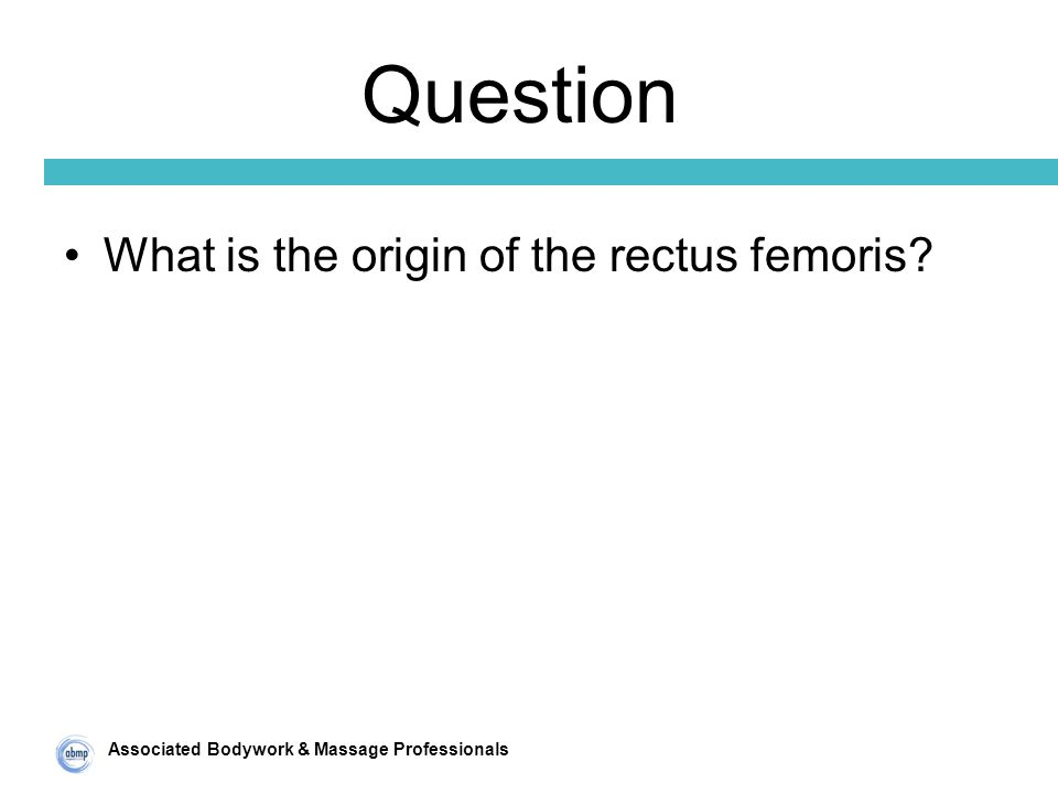 Associated Bodywork & Massage Professionals Question What is the origin of the rectus femoris