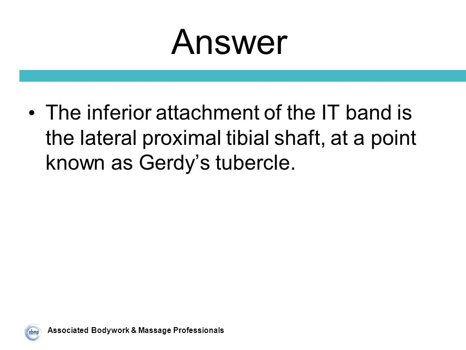 Associated Bodywork & Massage Professionals Answer The inferior attachment of the IT band is the lateral proximal tibial shaft, at a point known as Gerdy's tubercle.
