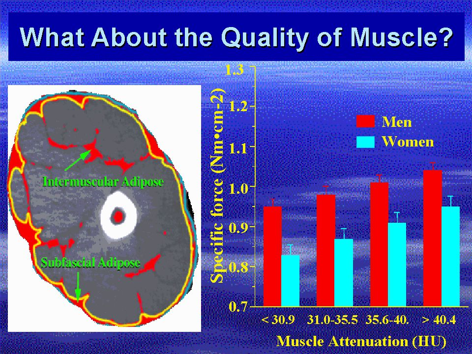 What About the Quality of Muscle? 0.7 0.8 0.9 1.0 1.1 1.2 1.3 Specific force (Nmcm-2) < 30.931.0-35.535.6-40.> 40.4 Muscle Attenuation (HU) Men Women
