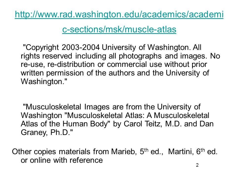 43 Anterior wrist pronator and flexors Origin on medial epicondle of humerus: pronator teres, flexor carpi radialis, palmaris longus, flexor carpi ulnaris, flexor digitorum superficialis Pronator teres Palmaris longus http://www.rad.washington.edu/academics/academic-sections/msk/muscle-atlas