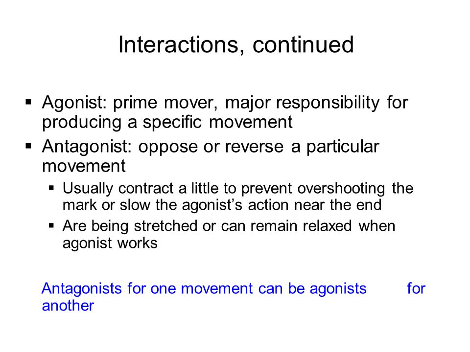  Synergists help prime movers  Add a little extra force to the same movement  Or reduce undesirable extra movements (e.g.