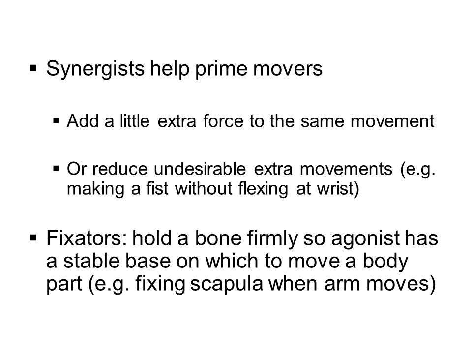 30 Per Marieb… (worthwhile to know) During full flexion (i.e.
