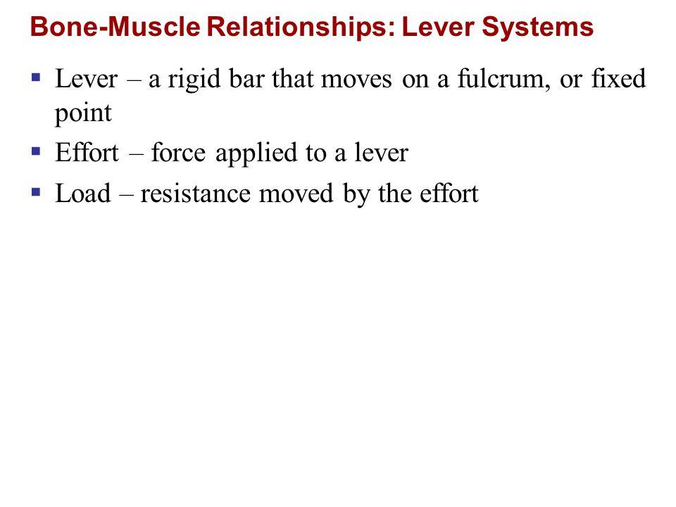 Muscles of the Neck: Head Movements Figure 10.9a Major head flexor Lateral head movements