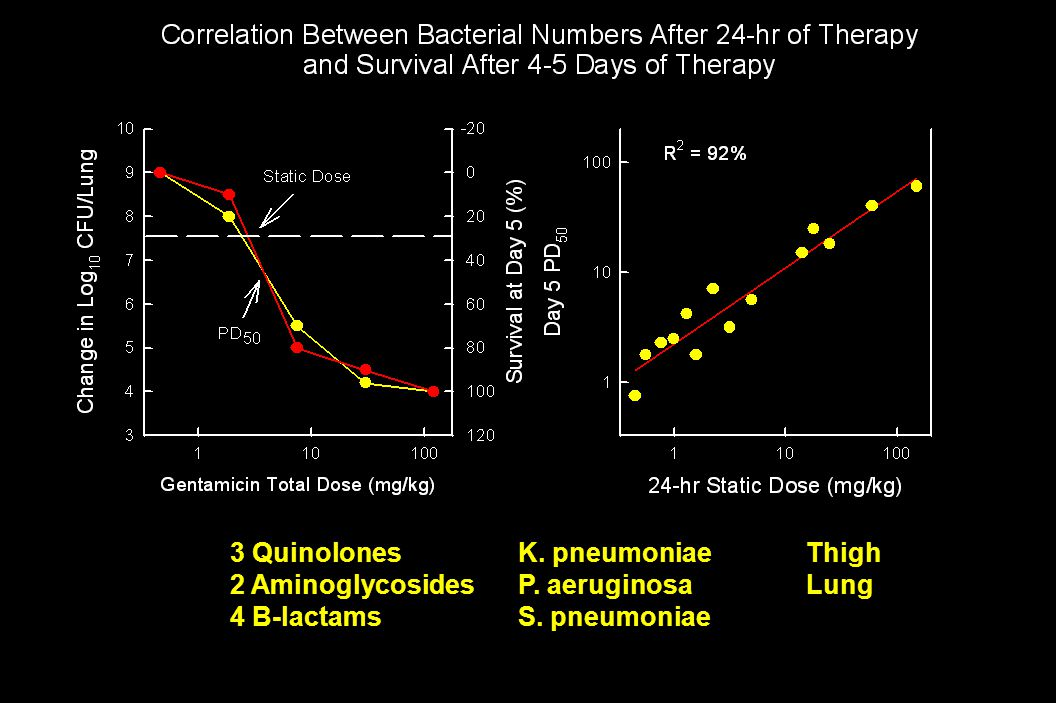 3 QuinolonesK. pneumoniaeThigh 2 AminoglycosidesP. aeruginosaLung 4 B-lactamsS. pneumoniae
