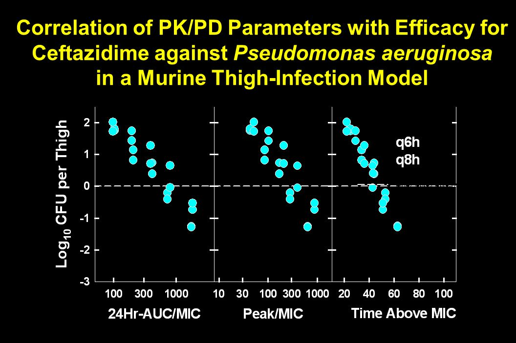 Correlation of PK/PD Parameters with Efficacy for Ceftazidime against Pseudomonas aeruginosa in a Murine Thigh-Infection Model