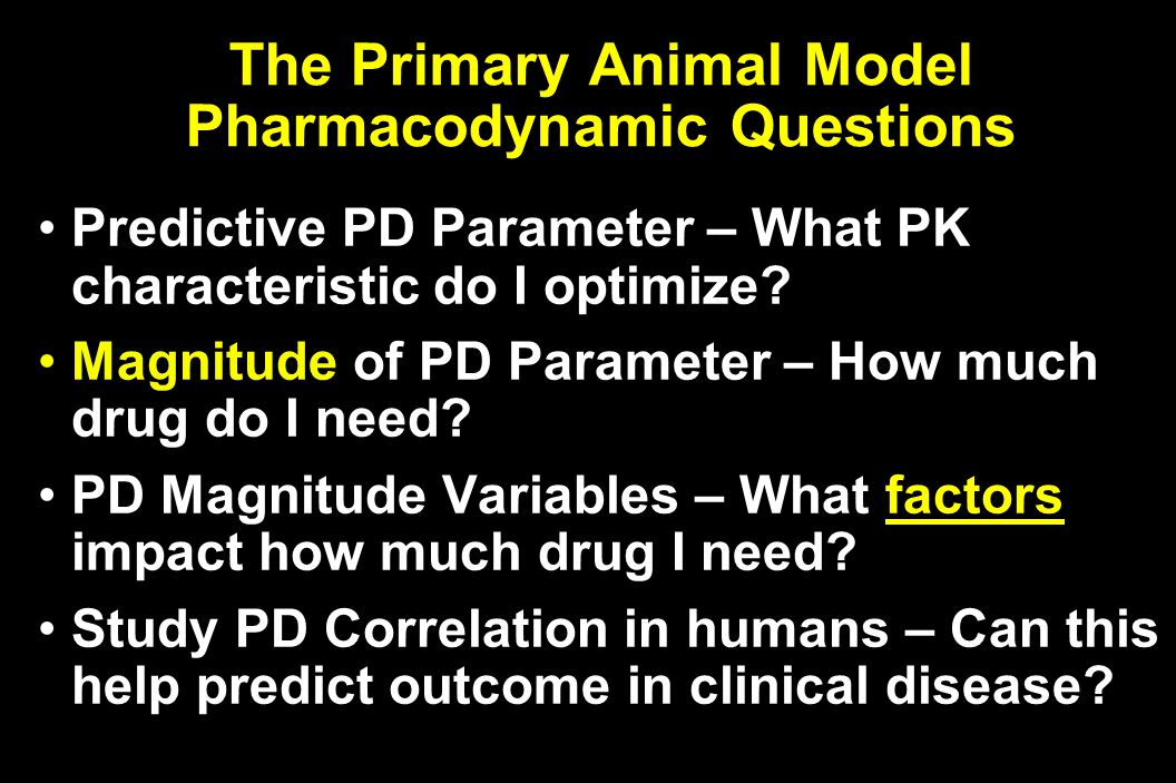 The Primary Animal Model Pharmacodynamic Questions Predictive PD Parameter – What PK characteristic do I optimize.