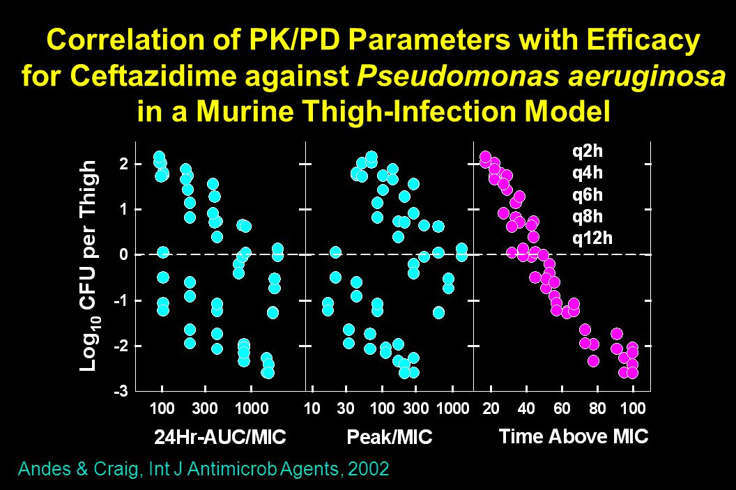 Correlation of PK/PD Parameters with Efficacy for Ceftazidime against Pseudomonas aeruginosa in a Murine Thigh-Infection Model Andes & Craig, Int J Antimicrob Agents, 2002