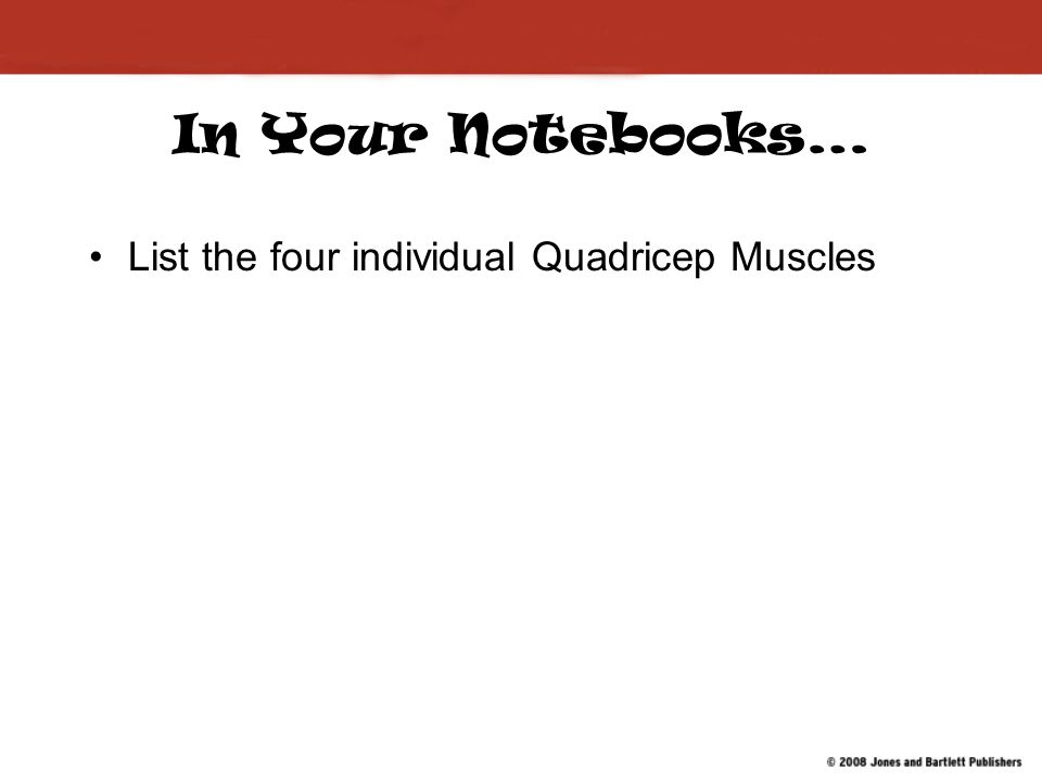 In Your Notebooks… List the four individual Quadricep Muscles