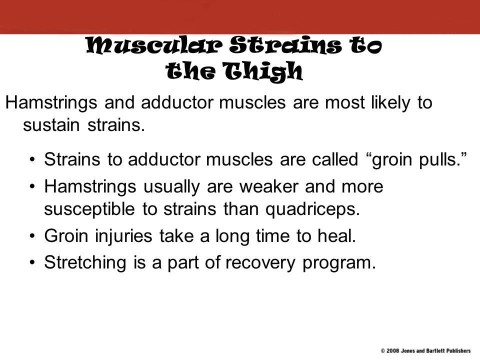 Muscular Strains to the Thigh Hamstrings and adductor muscles are most likely to sustain strains.