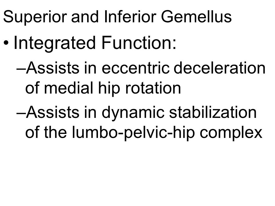 Superior and Inferior Gemellus Integrated Function: –Assists in eccentric deceleration of medial hip rotation –Assists in dynamic stabilization of the