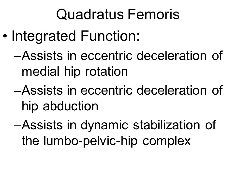 Quadratus Femoris Integrated Function: –Assists in eccentric deceleration of medial hip rotation –Assists in eccentric deceleration of hip abduction –