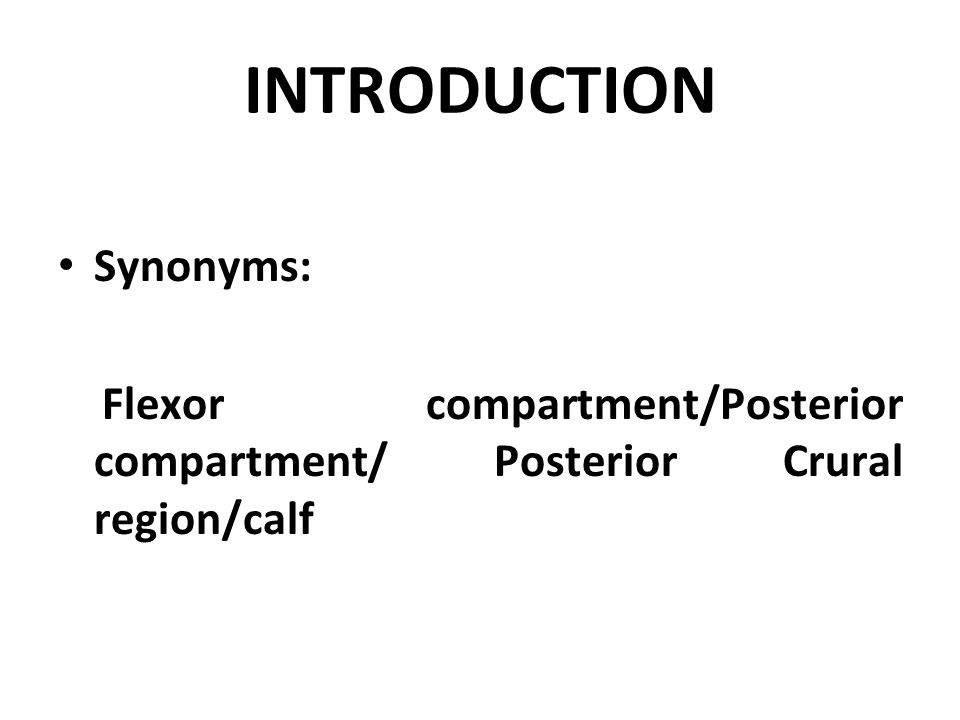 INTRODUCTION Synonyms: Flexor compartment/Posterior compartment/ Posterior Crural region/calf