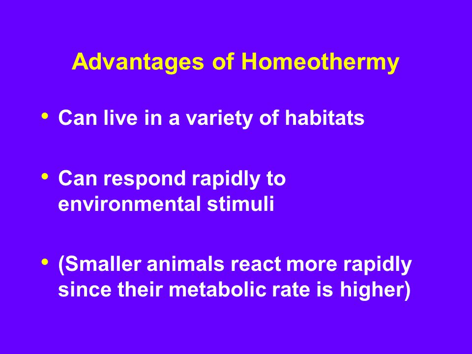 Advantages of Homeothermy Can live in a variety of habitats Can respond rapidly to environmental stimuli (Smaller animals react more rapidly since their metabolic rate is higher)