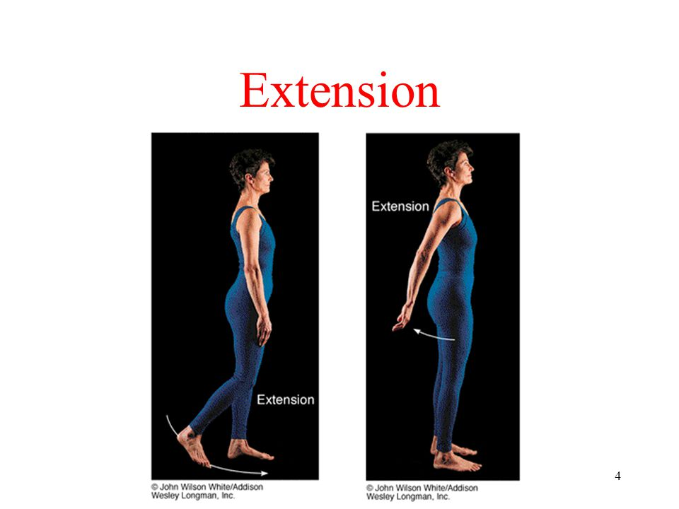 4 Extension