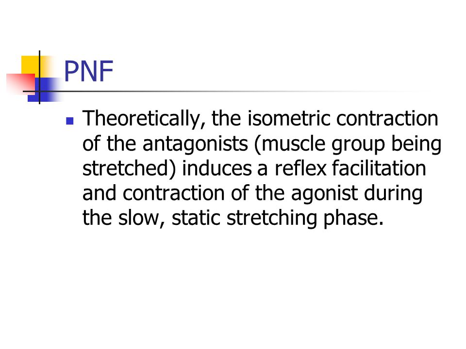 PNF Theoretically, the isometric contraction of the antagonists (muscle group being stretched) induces a reflex facilitation and contraction of the agonist during the slow, static stretching phase.