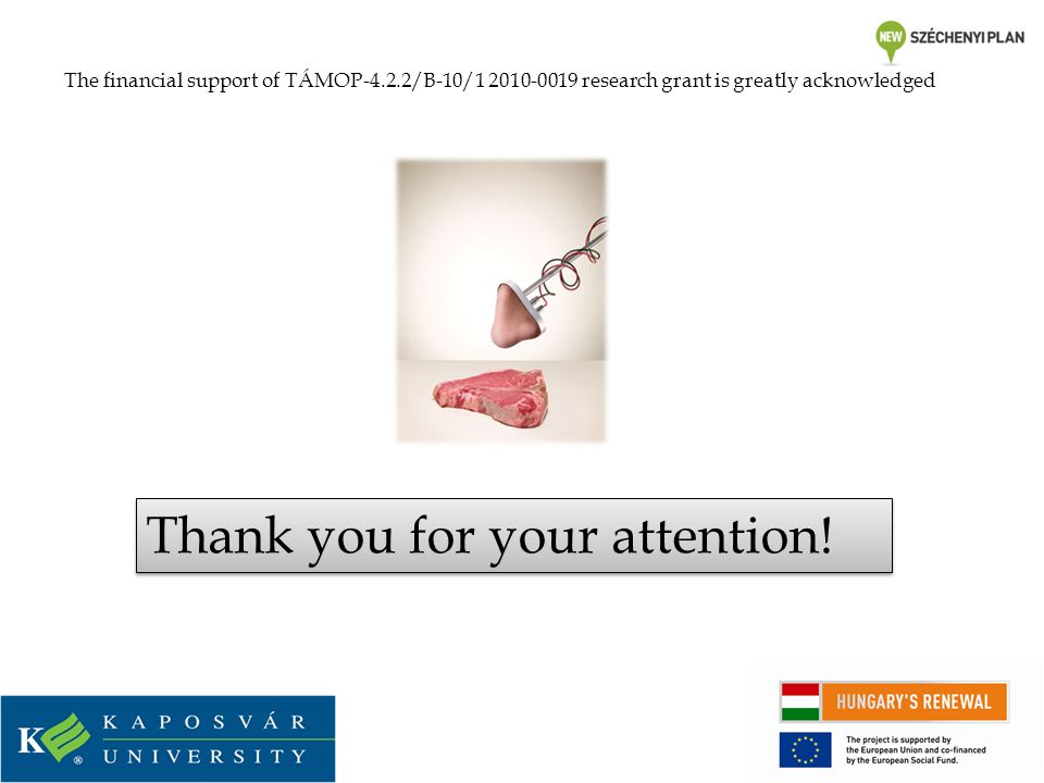 Thank you for your attention! The financial support of TÁMOP-4.2.2/B-10/1 2010-0019 research grant is greatly acknowledged