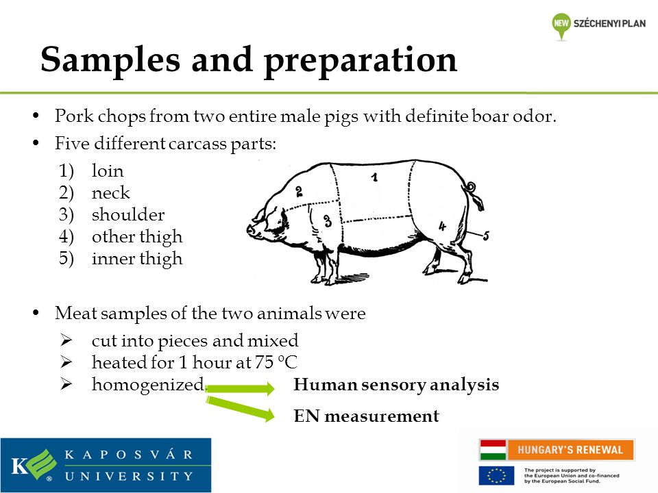 Samples and preparation Pork chops from two entire male pigs with definite boar odor. Five different carcass parts: 1)loin 2)neck 3)shoulder 4)other t