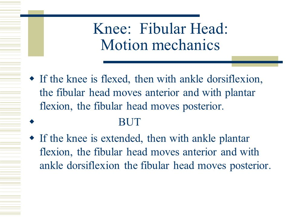 Knee: Fibular Head: Motion mechanics  If the knee is flexed, then with ankle dorsiflexion, the fibular head moves anterior and with plantar flexion,