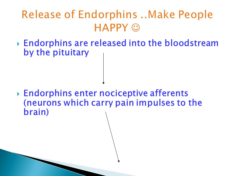  Endorphins are released into the bloodstream by the pituitary  Endorphins enter nociceptive afferents (neurons which carry pain impulses to the bra