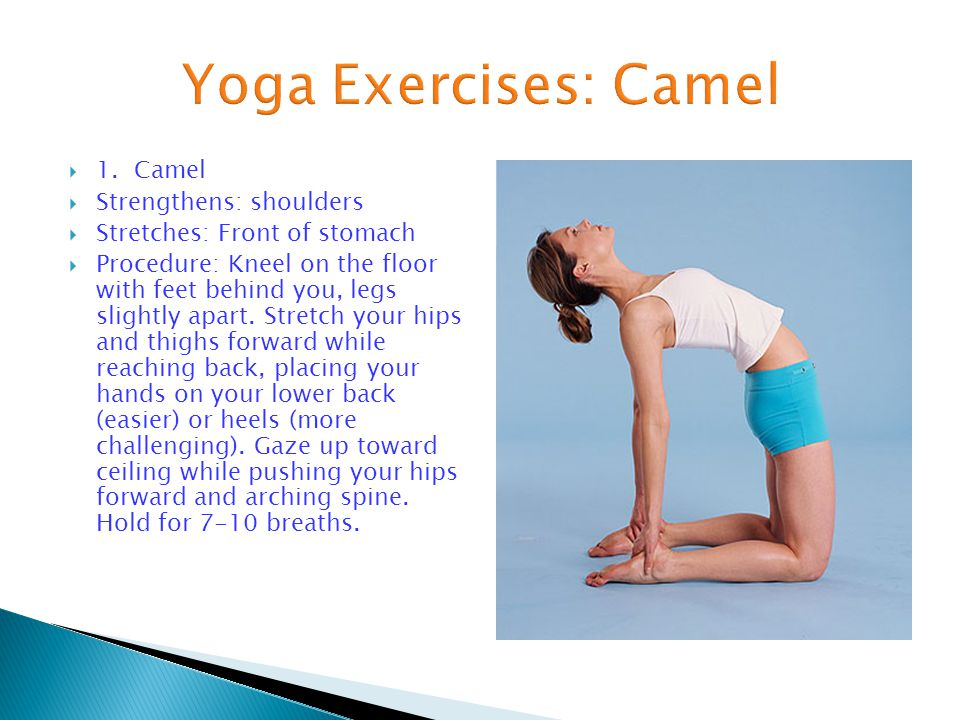  1. Camel  Strengthens: shoulders  Stretches: Front of stomach  Procedure: Kneel on the floor with feet behind you, legs slightly apart. Stretch y