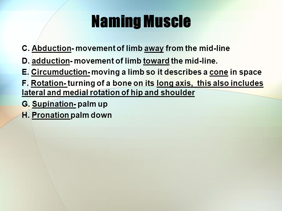 Naming Muscle C.Abduction- movement of limb away from the mid-line D.