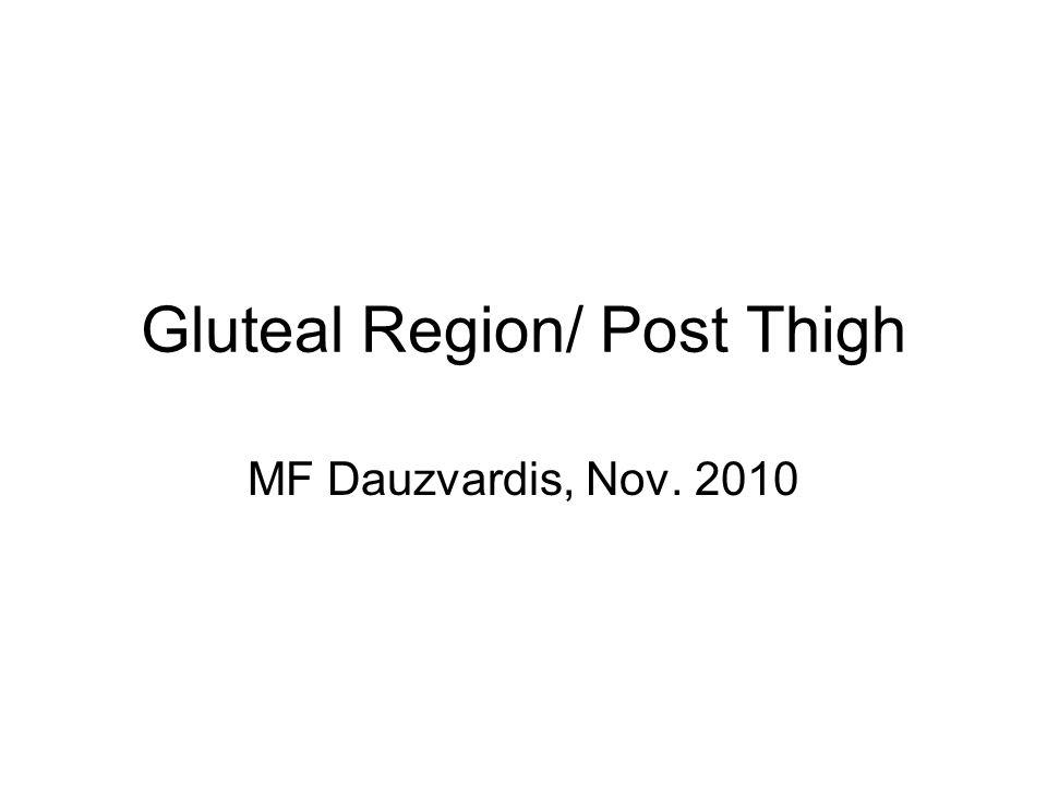 Gluteal Region/ Post Thigh MF Dauzvardis, Nov. 2010