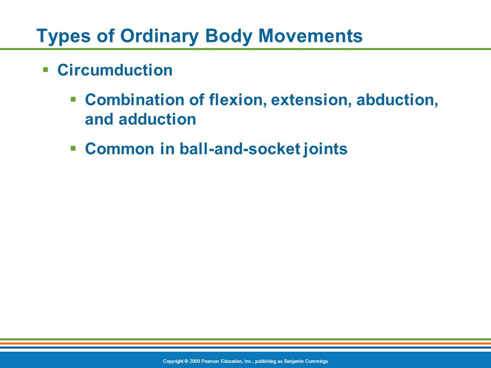 Copyright © 2009 Pearson Education, Inc., publishing as Benjamin Cummings Types of Ordinary Body Movements  Circumduction  Combination of flexion, e