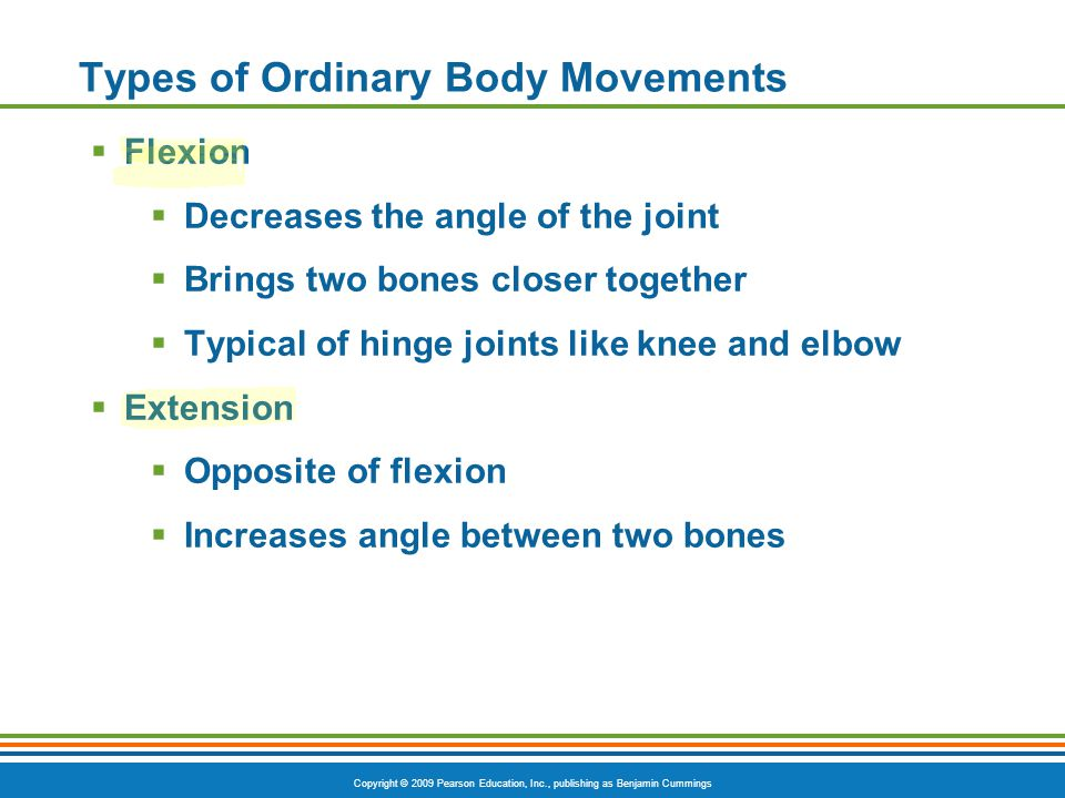 Copyright © 2009 Pearson Education, Inc., publishing as Benjamin Cummings Types of Ordinary Body Movements Figure 6.13a