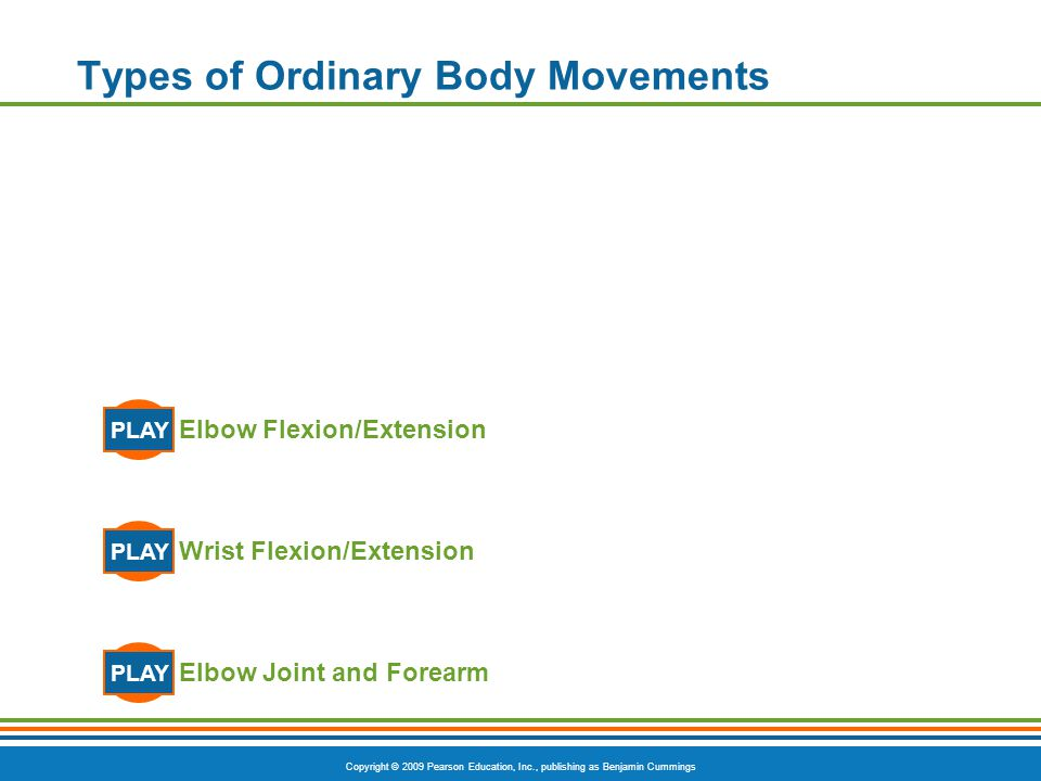 Copyright © 2009 Pearson Education, Inc., publishing as Benjamin Cummings Types of Ordinary Body Movements  Rotation  Movement of a bone around its longitudinal axis  Common in ball-and-socket joints  Example is when you move atlas around the dens of axis (shake your head no )