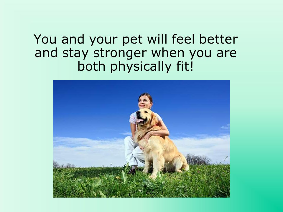 You and your pet will feel better and stay stronger when you are both physically fit!