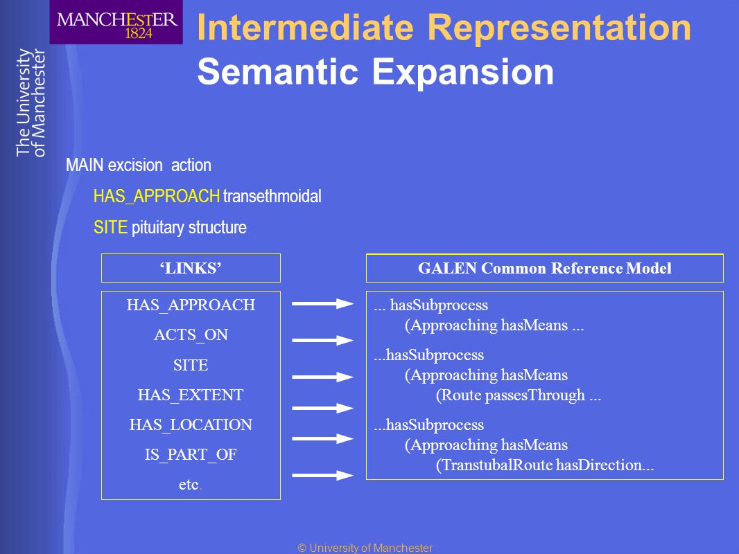 © University of Manchester Intermediate Representation Semantic Expansion MAIN excision action HAS_APPROACH transethmoidal SITE pituitary structure transethmoidal leg excision - action pituitary structure open partial etc.