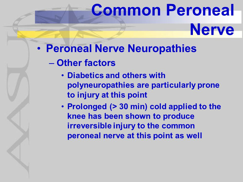 Common Peroneal Nerve Symptoms of Peroneal Nerve Neuropathies include: –Complete or partial footdrop –Paresthesias or numbness on the anterio-lateral leg & dorsum of the foot –Mild, deep boring pain around the lateral leg and knee may be reported