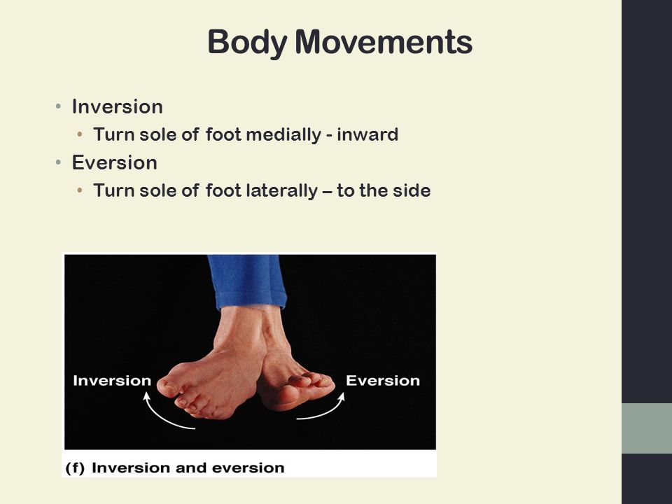 Body Movements Inversion Turn sole of foot medially - inward Eversion Turn sole of foot laterally – to the side