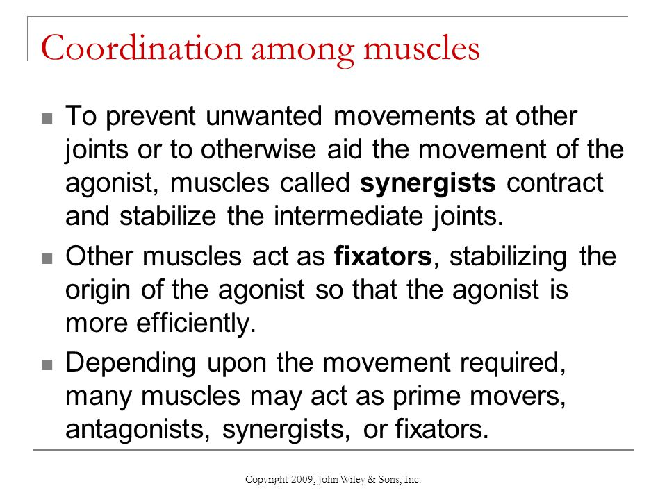 Copyright 2009, John Wiley & Sons, Inc. Coordination among muscles To prevent unwanted movements at other joints or to otherwise aid the movement of t
