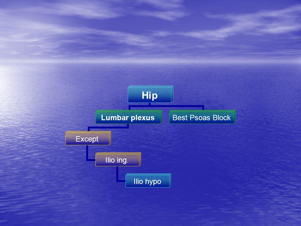 Hip Lumbar plexus Except Ilio ing. Ilio hypo Best Psoas Block