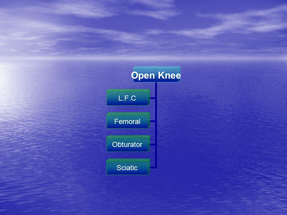 Open Knee L.F.C Femoral Obturator Sciatic