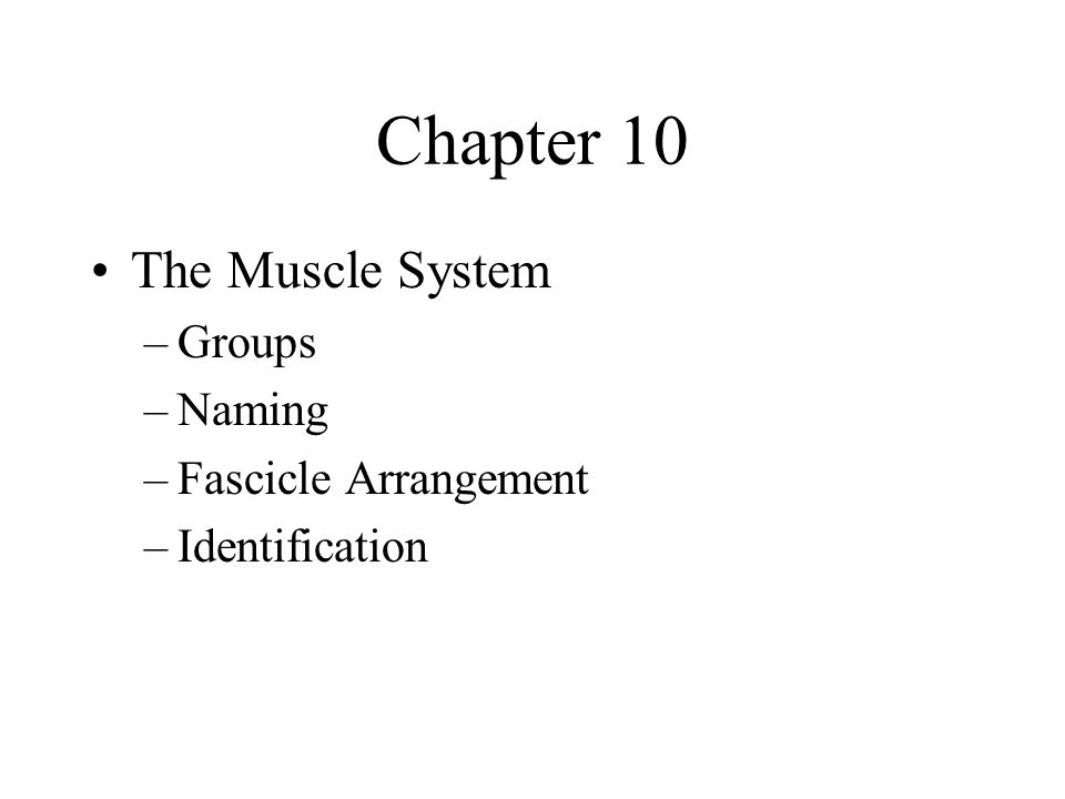 Interactions of Skeletal Muscles Skeletal muscles work together or in opposition Muscles only pull (never push) As muscles shorten, the insertion generally moves toward the origin Whatever a muscle (or group of muscles) does, another muscle (or group) undoes
