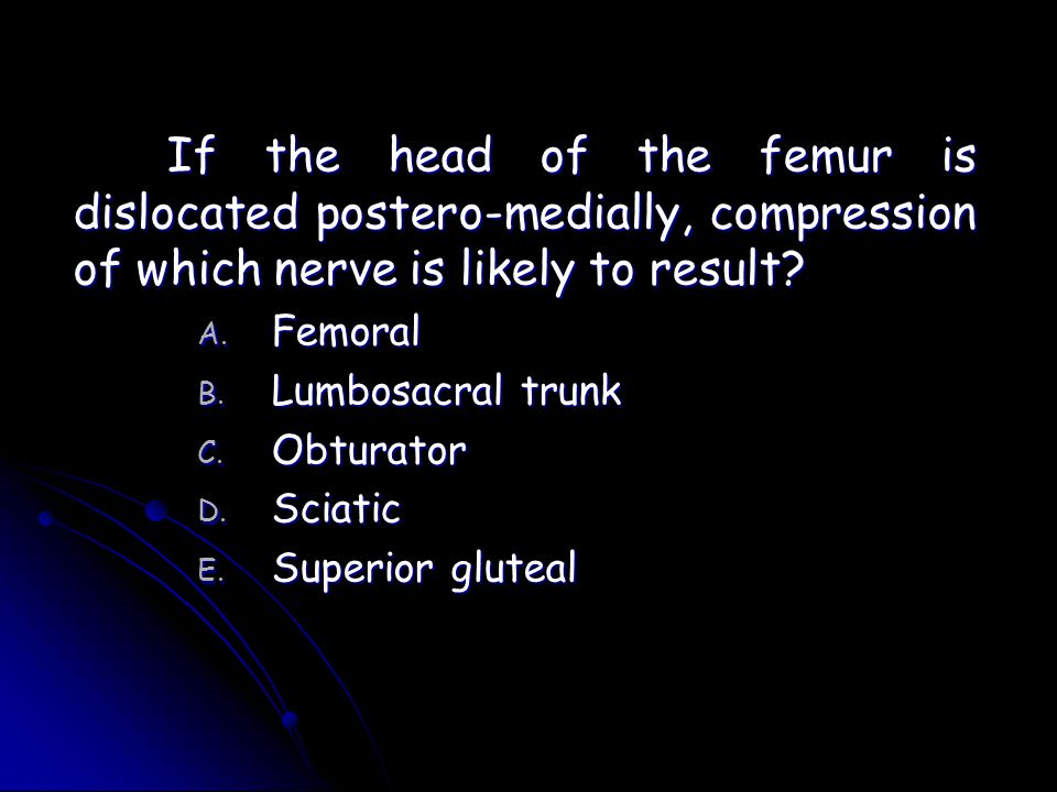 If the head of the femur is dislocated postero-medially, compression of which nerve is likely to result? A. Femoral B. Lumbosacral trunk C. Obturator
