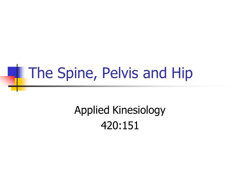 The Spine, Pelvis and Hip Applied Kinesiology 420:151