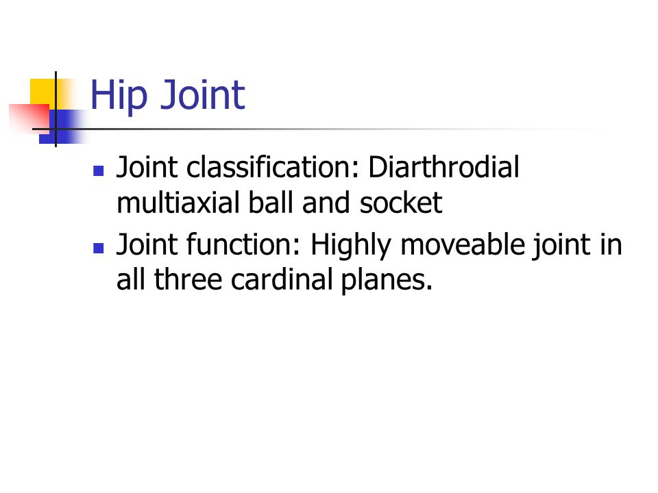 Hip Joint Joint classification: Diarthrodial multiaxial ball and socket Joint function: Highly moveable joint in all three cardinal planes.