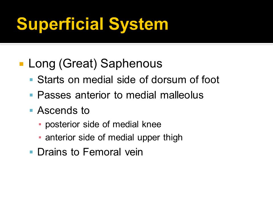  Long (Great) Saphenous  Starts on medial side of dorsum of foot  Passes anterior to medial malleolus  Ascends to ▪posterior side of medial knee ▪anterior side of medial upper thigh  Drains to Femoral vein