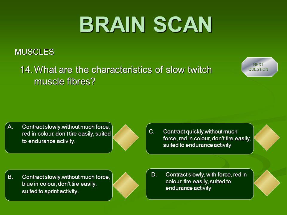 BRAIN SCAN MUSCLES A.